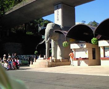 多摩動物園だゾウ.jpg